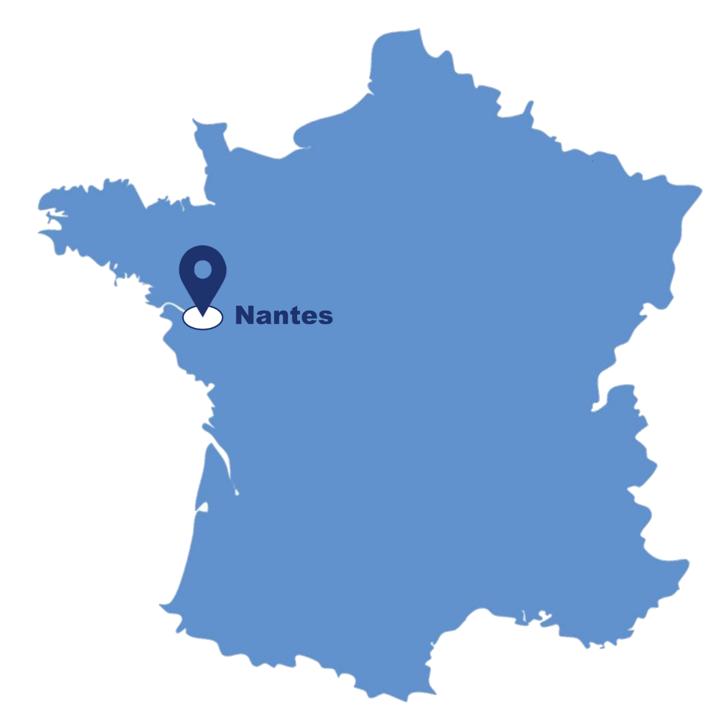 Location de nacelles élévatrices et chariots télescopiques à Nantes - Riwal